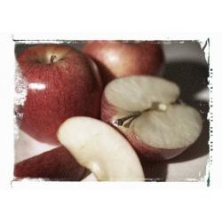 healthy-apple-recipes